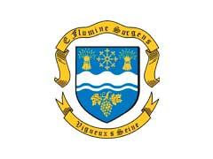 logo vigneux sur seine